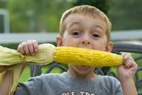 eating grilled corn on the cob
