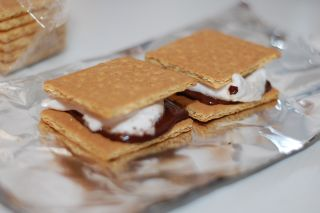 melty gooey s'mores